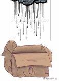 cartons humidite